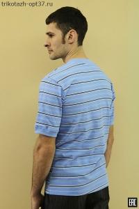Мужская футболка - поло, модель 02ЦВ
