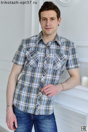 Рубашка в клетку, молодежная, короткий рукав, модель 30, в ассортименте